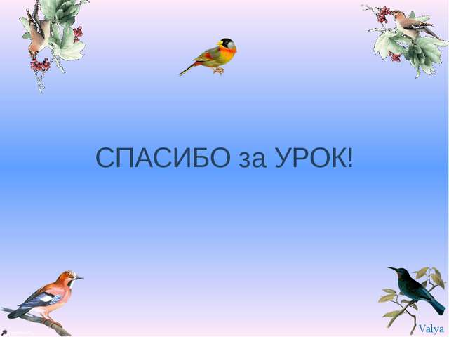 СПАСИБО за УРОК! Valya