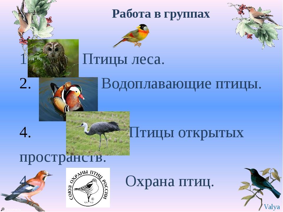 Работа в группах 1. Птицы леса. Водоплавающие птицы. . Птицы открытых простра...