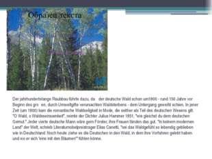 Der jahrhundertelange Raubbau führte dazu, daβ der deutsche Wald schon um1800