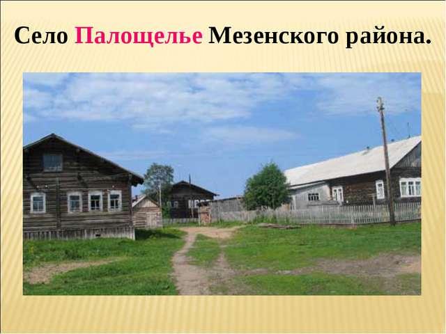 Село Палощелье Мезенского района.