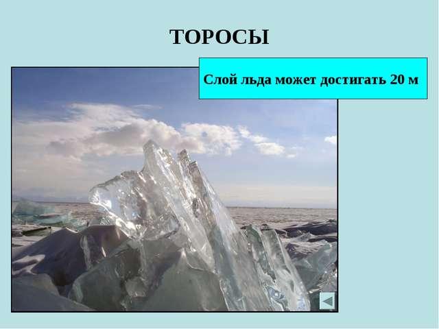 ТОРОСЫ Слой льда может достигать 20 м