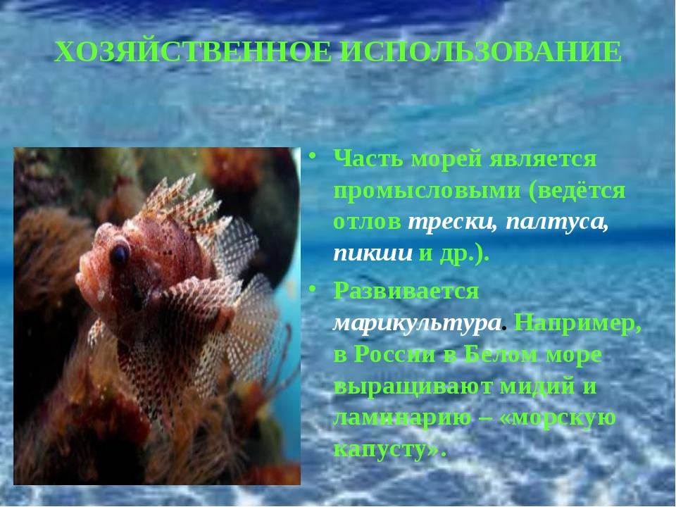 ХОЗЯЙСТВЕННОЕ ИСПОЛЬЗОВАНИЕ Часть морей является промысловыми (ведётся отлов...