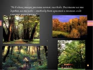 """""""Не в одних стихах разлита поэзия: она везде. Взгляните на эти деревья, на эт"""
