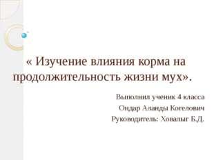 « Изучение влияния корма на продолжительность жизни мух». Выполнил ученик 4