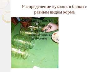 Распределение куколок в банки с разным видом корма