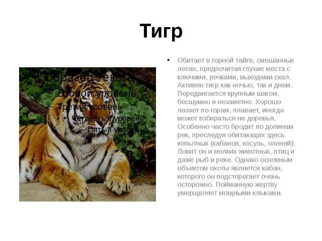 Тигр Обитает в горной тайге, смешанных лесах, предпочитая глухие места с ключ...