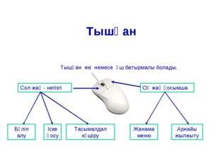 Тышқан екі немесе үш батырмалы болады. Тышқан Сол жақ - негізгі Оң жақ қосымш