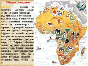 Африка — второй по величине материк Земли после Евразии (площадь — 29,2 млн к
