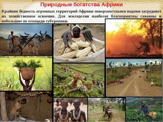 Природные богатства Африки Крайняя бедность огромных территорий Африки поверх...