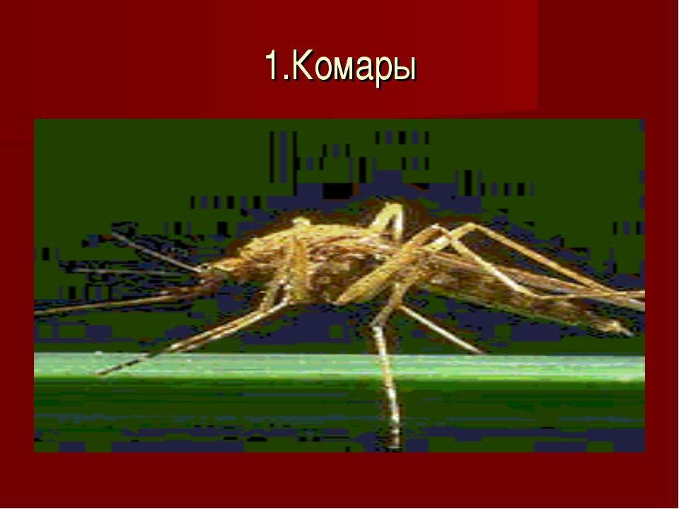 1.Комары