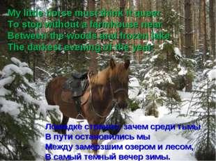 Лошадке странно: зачем среди тьмы В пути остановились мы Между замёрзшим озер