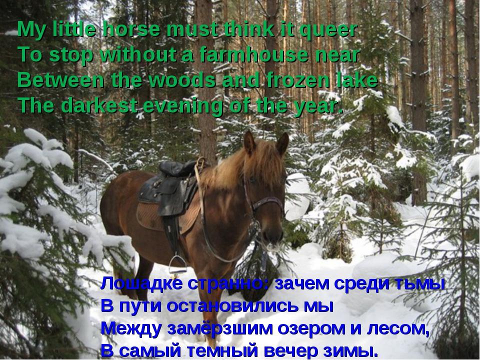 Лошадке странно: зачем среди тьмы В пути остановились мы Между замёрзшим озер...