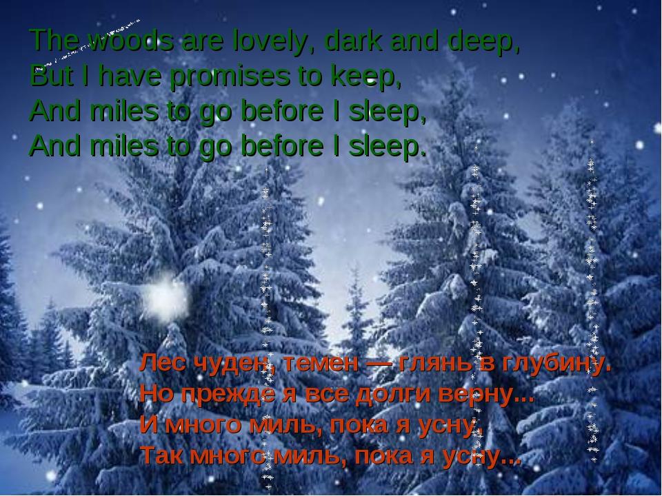 Лес чуден, темен — глянь в глубину. Но прежде я все долги верну... И много ми...