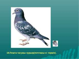 18.Пошта тасушы курьер(почташы көгершін).