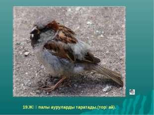 19.Жұқпалы ауруларды таратады.(торғай).