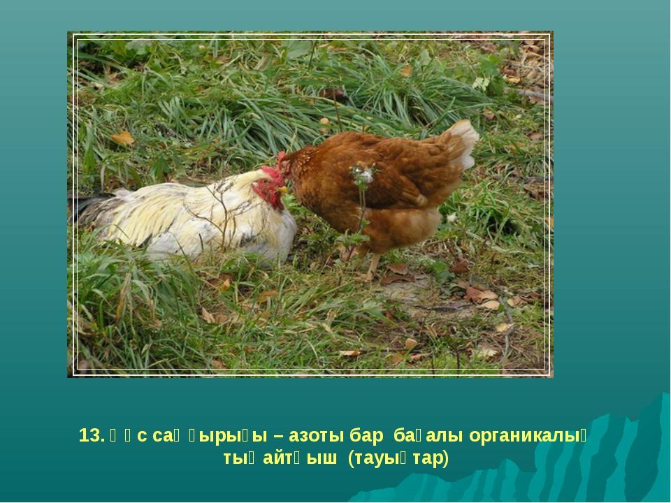 13. Құс саңғырығы – азоты бар бағалы органикалық тыңайтқыш (тауықтар)