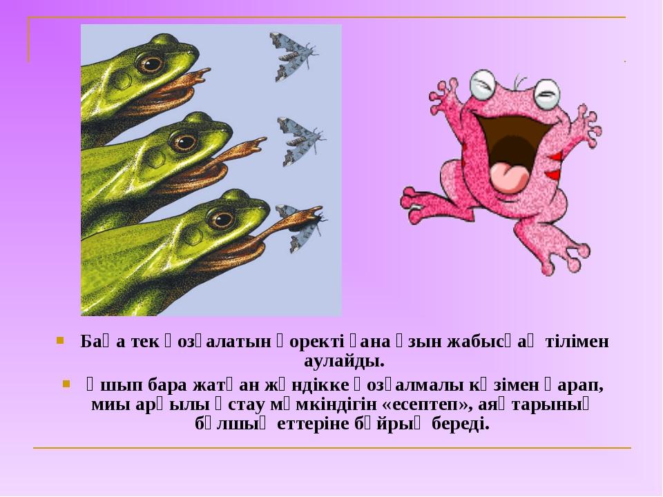 Бақа тек қозғалатын қоректі ғана ұзын жабысқақ тілімен аулайды. Ұшып бара жат...