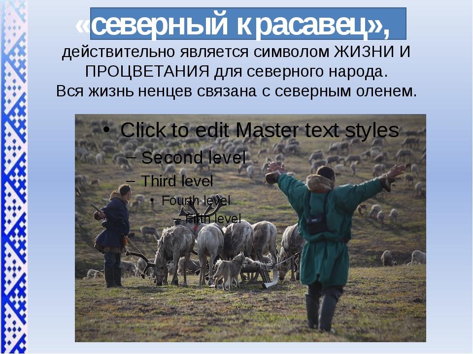 «северный красавец», действительно является символом ЖИЗНИ И ПРОЦВЕТАНИЯ для...