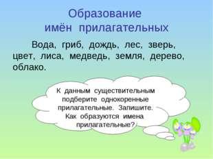 Образование имён прилагательных Вода, гриб, дождь, лес, зверь, цвет, лиса, ме