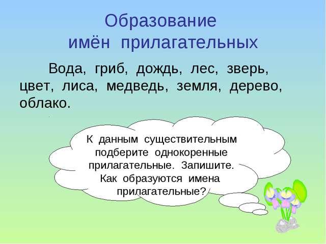 Образование имён прилагательных Вода, гриб, дождь, лес, зверь, цвет, лиса, ме...