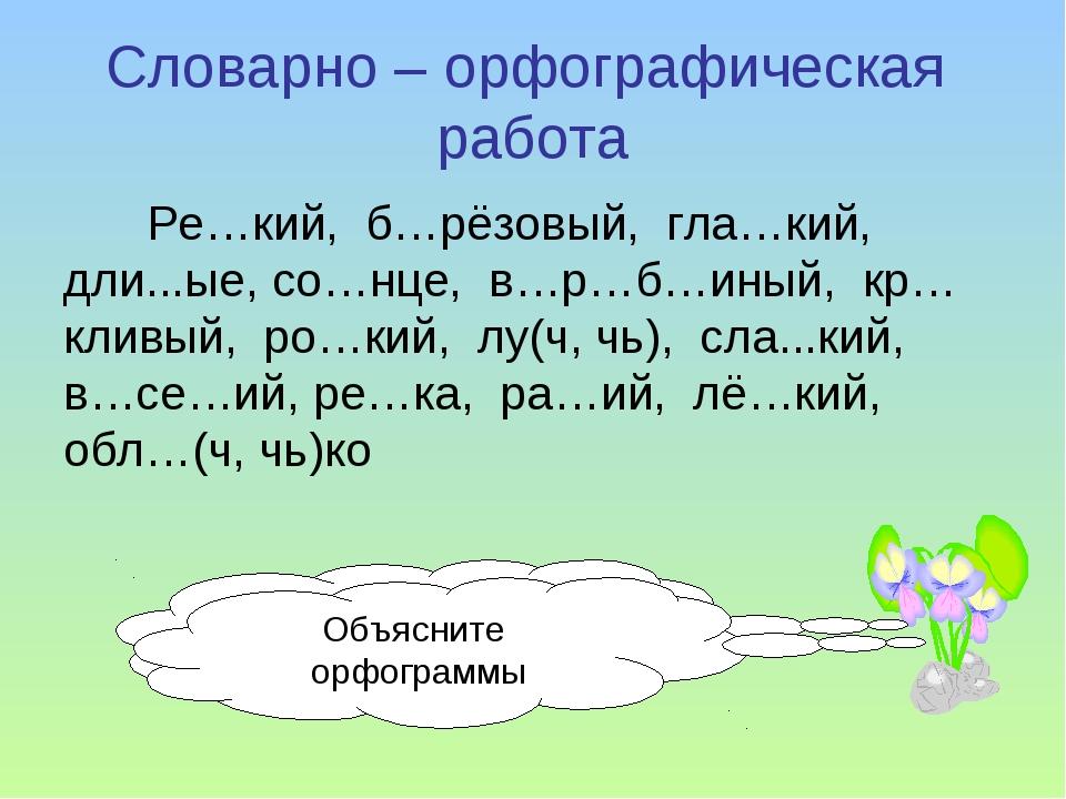 Словарно – орфографическая работа Ре…кий, б…рёзовый, гла…кий, дли...ые, со…нц...