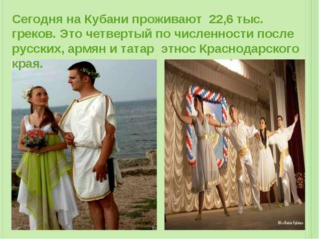 Сегодня на Кубани проживают 22,6 тыс. греков. Это четвертый по численности по...