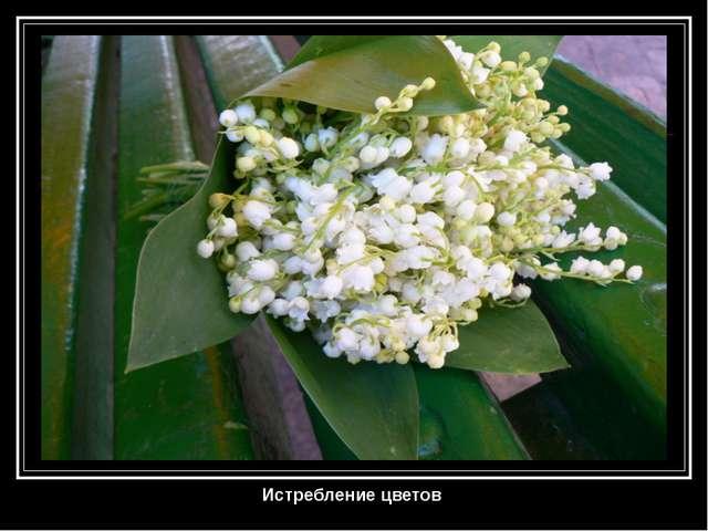 Истребление цветов