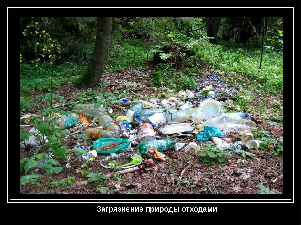 Загрязнение природы отходами
