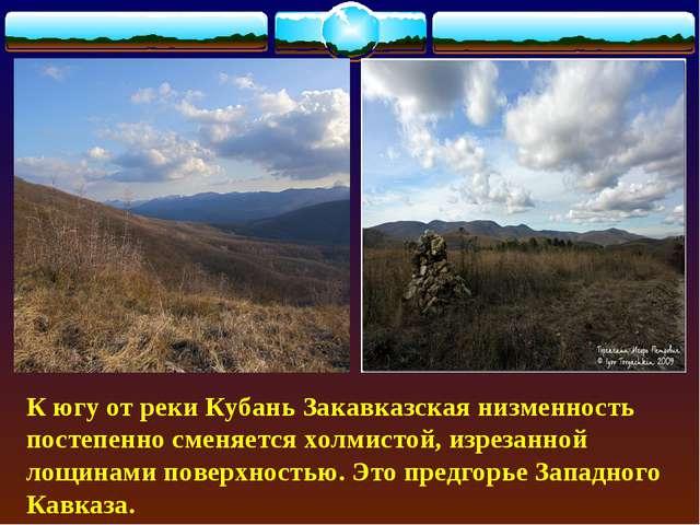 К югу от реки Кубань Закавказская низменность постепенно сменяется холмистой...