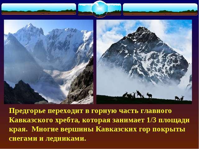 Предгорье переходит в горную часть главного Кавказского хребта, которая заним...