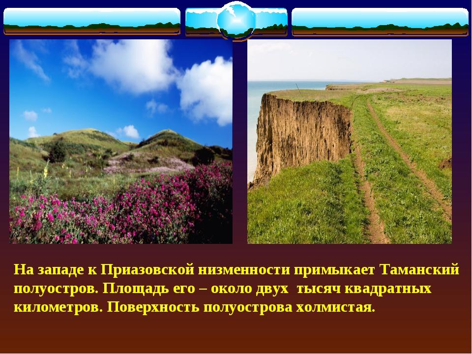 На западе к Приазовской низменности примыкает Таманский полуостров. Площадь...