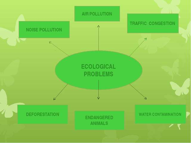 ECOLOGICAL PROBLEMS NOISE POLLUTION AIR POLLUTION DEFORESTATION TRAFFIC CONGE...