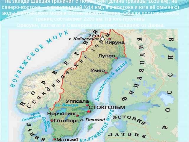 На западе Швеция граничит сНорвегией(длина границы 1619 км), на северо-вост...