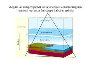Жердің ағзалар тұратын және оларды қалыптастырушы тіршілік ортасын биосфера қ