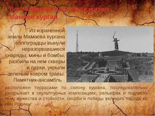 Волгоградцы вернули к жизни Мамаев курган Из израненной земли Мамаева кургана...
