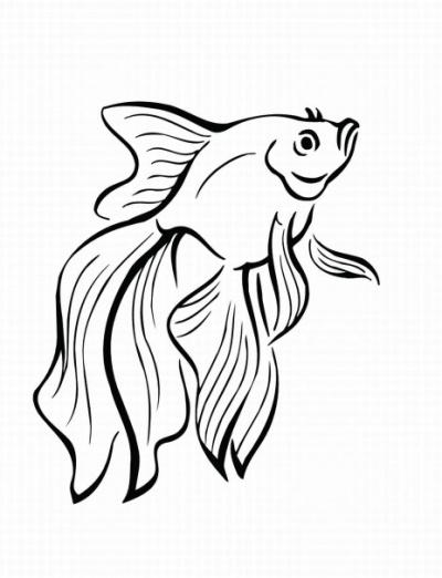 H:\урок\raskraska-ryby-18.jpg