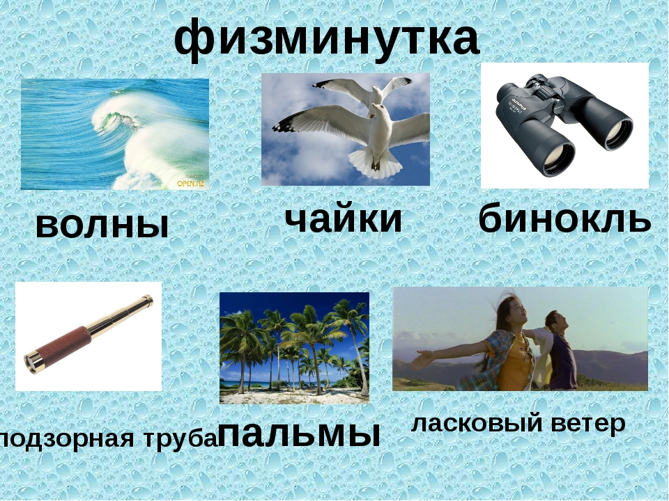 физминутка волны чайки бинокль подзорная труба пальмы ласковый ветер