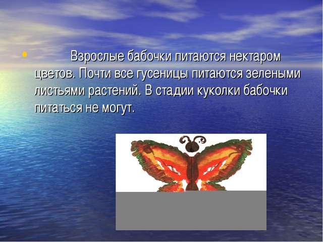 Взрослые бабочки питаются нектаром цветов. Почти все гусеницы питаются зелен...