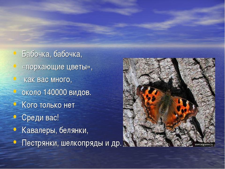 Бабочка, бабочка, «порхающие цветы», как вас много, около 140000 видов. Кого...