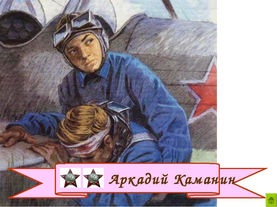 Аркадий Каманин