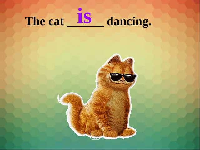 The cat ______ dancing. is
