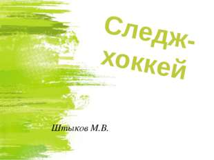 Штыков М.В. Следж-хоккей