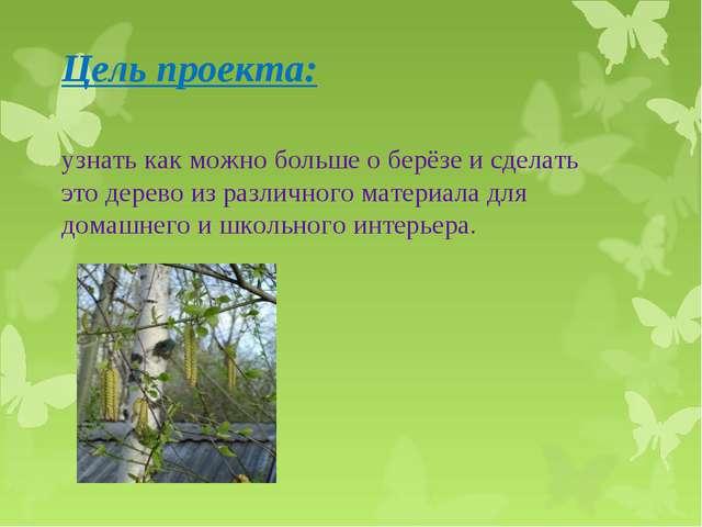 Цель проекта:  узнать как можно больше о берёзе и сделать это дерево из разл...