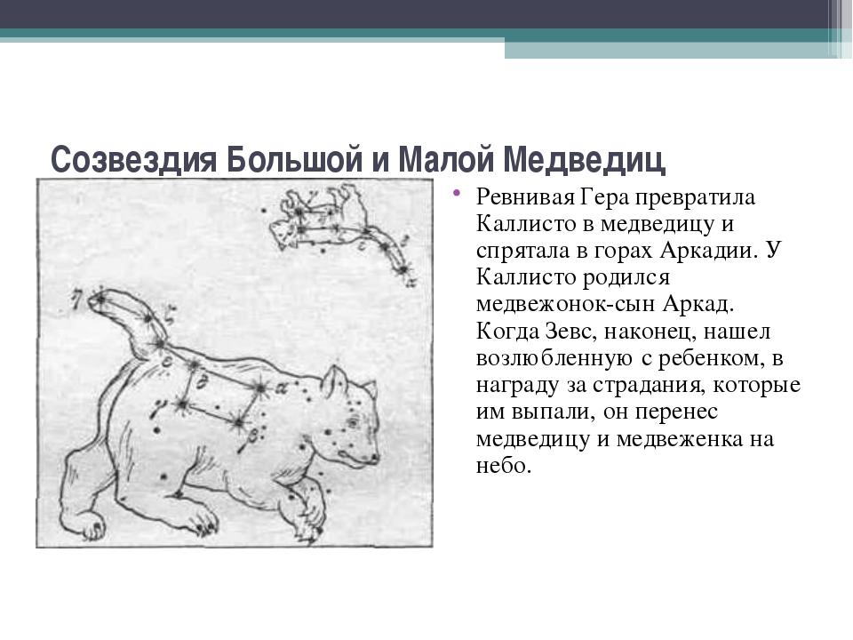 Созвездия Большой и Малой Медведиц Ревнивая Гера превратила Каллисто в медвед...