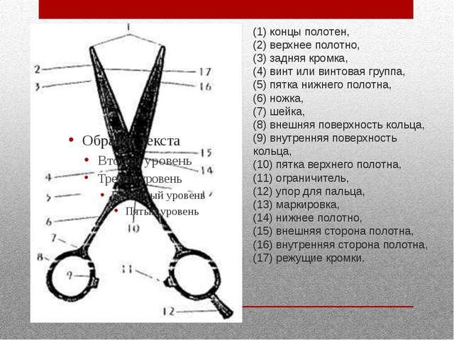 (1) концы полотен, (2) верхнее полотно, (3) задняя кромка, (4) винт или винто...