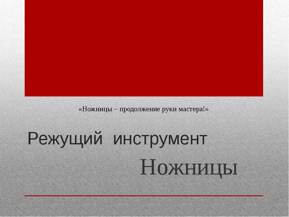 Режущий инструмент Ножницы «Ножницы – продолжение руки мастера!»