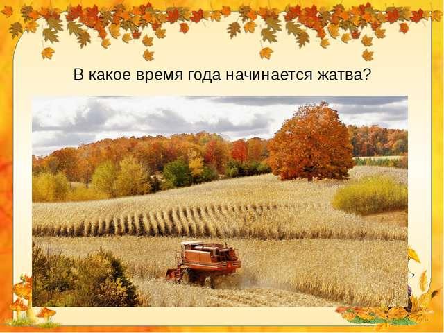 В какое время года начинается жатва?