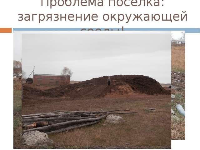 Проблема поселка: загрязнение окружающей среды!