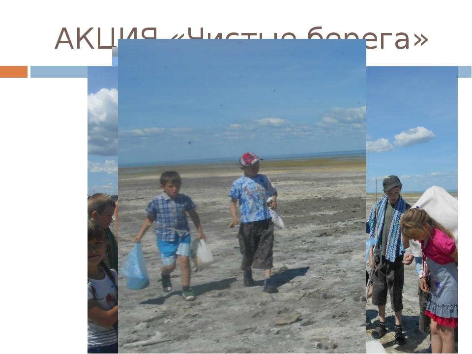 АКЦИЯ «Чистые берега»