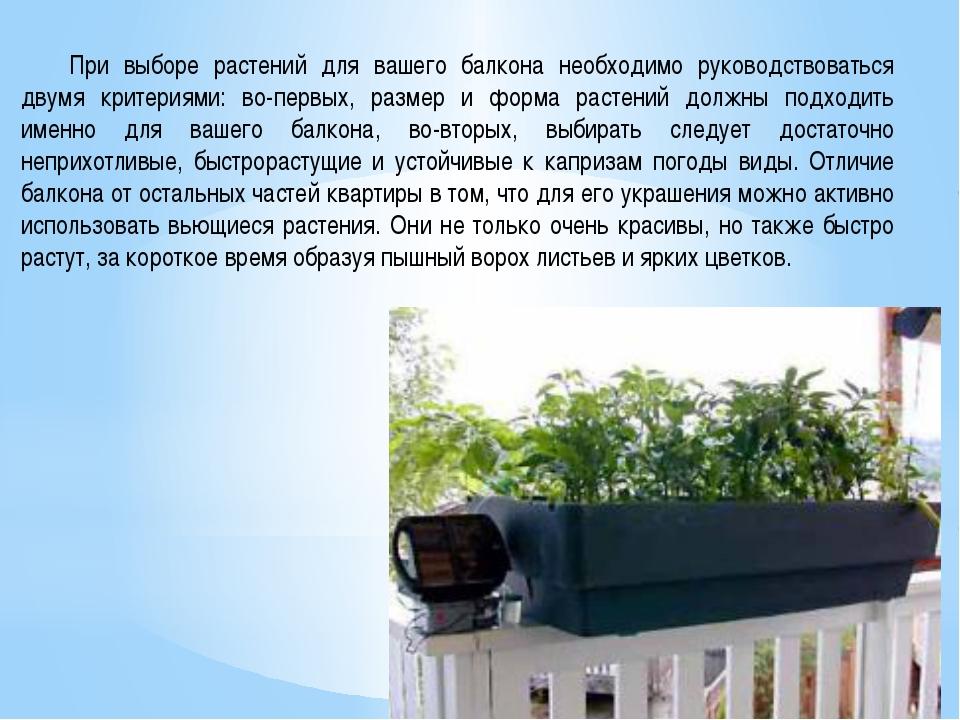 При выборе растений для вашего балкона необходимо руководствоваться двумя кр...